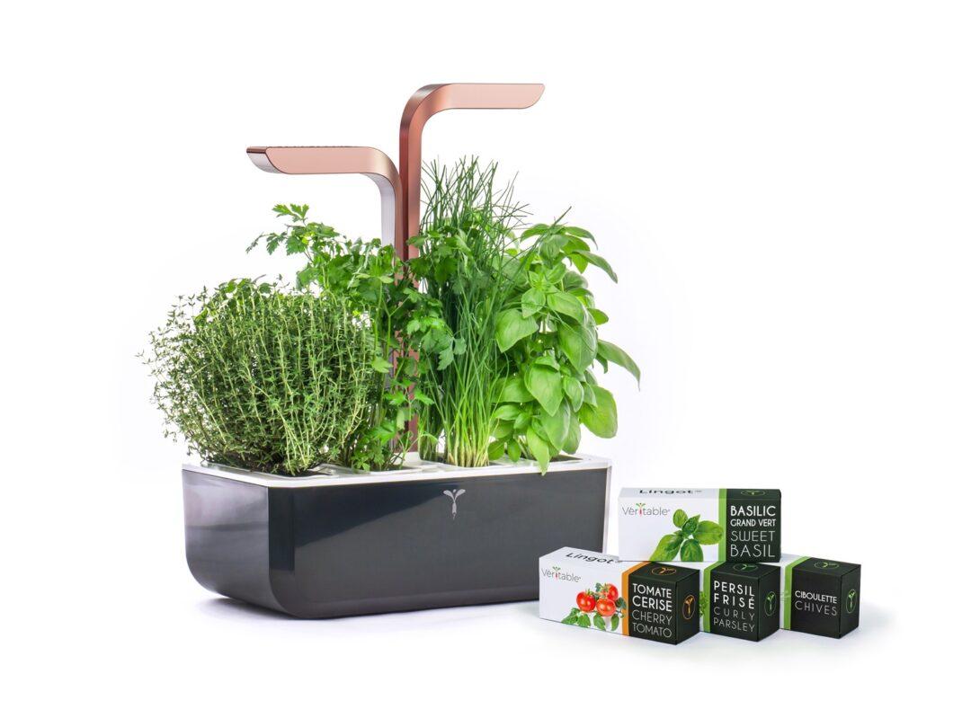 Indoor Smart Garden